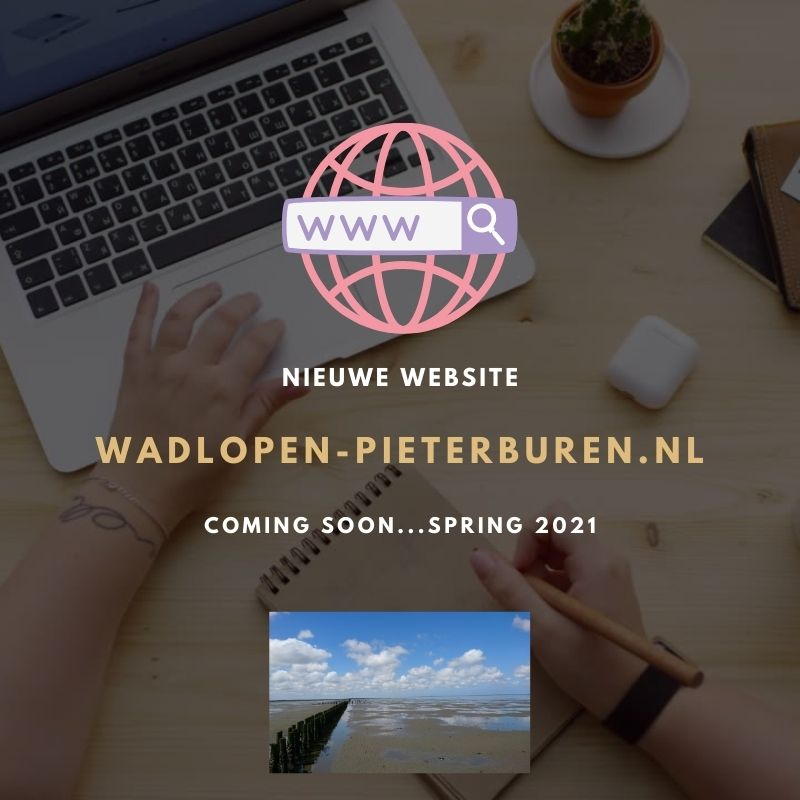 Nieuwe website voorjaar 2021